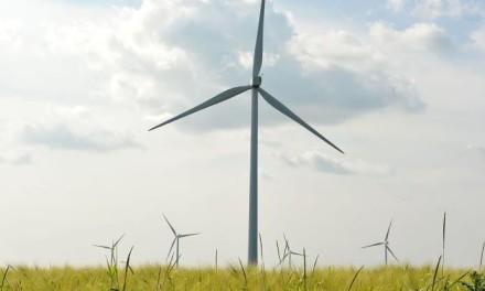 قطاع الطاقة المتجددة في مصر يتيح إمكانيات وفرص استثمارية كبيرة