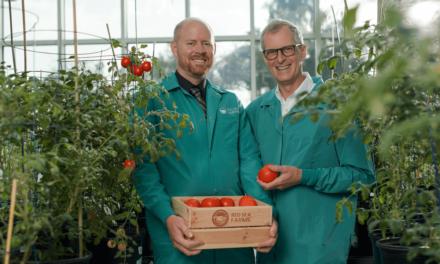 استثمار بقيمة 10 ملايين دولار لشركة مزارع البحر الأحمر لتقنيات الزراعة المستدامة والمتخصصة في الزراعة باستخدام المياه المالحة
