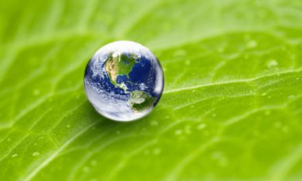 سيتا تواصل خطّتها لتحقيق حيادية الكربون الكاملة قبل عام 2022